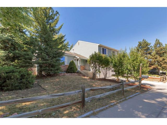 10281 Newcombe Court, Westminster, CO 80021 (#5213812) :: The Galo Garrido Group