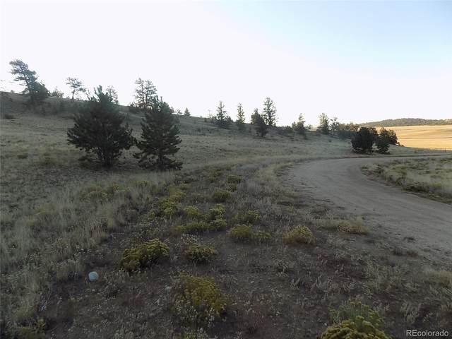 603 Goldenburg Canyon Road, Hartsel, CO 80449 (#5215029) :: James Crocker Team
