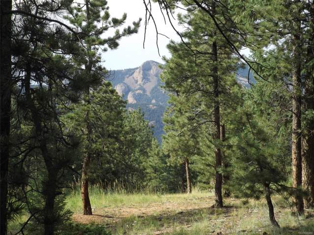 46 Firehouse Road, Pine, CO 80470 (MLS #5216246) :: 8z Real Estate