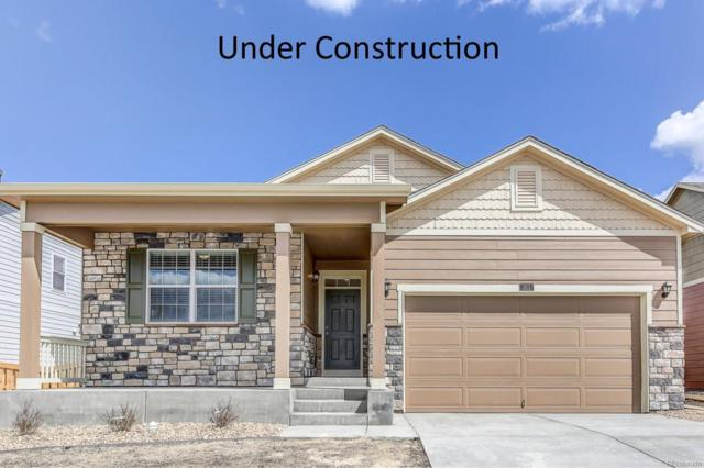 1780 Summer Bloom Drive, Windsor, CO 80550 (MLS #5217464) :: 8z Real Estate