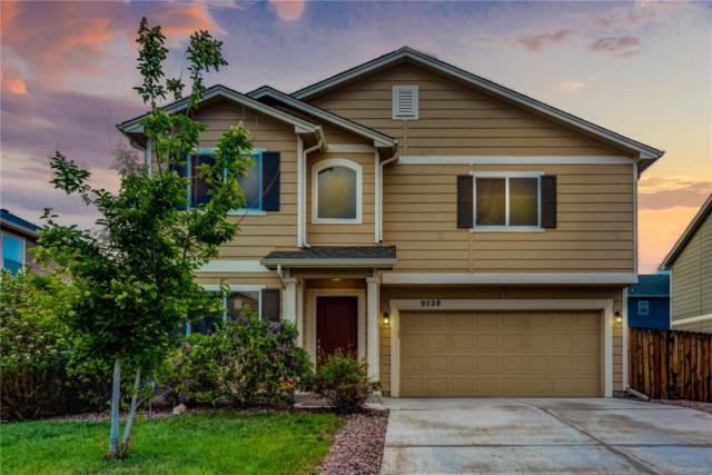 9528 Copper Canyon Lane, Colorado Springs, CO 80925 (#5219992) :: The Heyl Group at Keller Williams