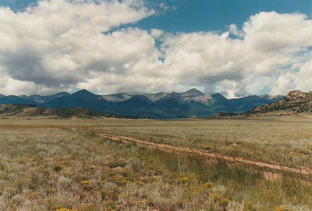 Round Up Road, Westcliffe, CO 81252 (#5224107) :: Portenga Properties - LIV Sotheby's International Realty