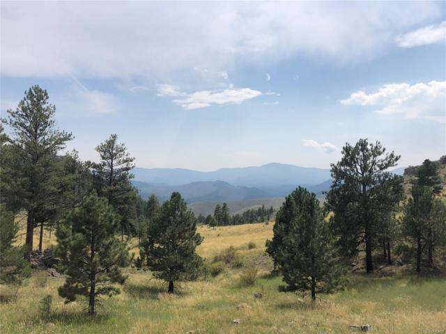 15095 Wetterhorn Peak Trail, Pine, CO 80470 (#5227373) :: Bring Home Denver