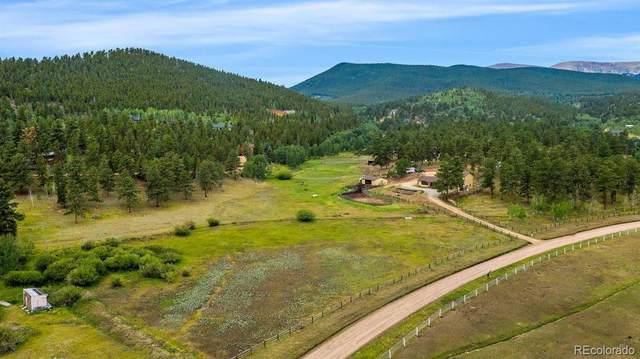 118 Chuckling Creek Road, Bailey, CO 80421 (MLS #5228775) :: 8z Real Estate
