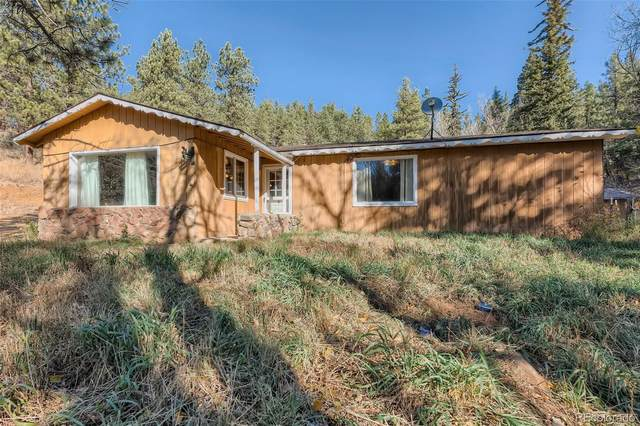 57833 Us Highway 285, Bailey, CO 80421 (#5230522) :: The DeGrood Team