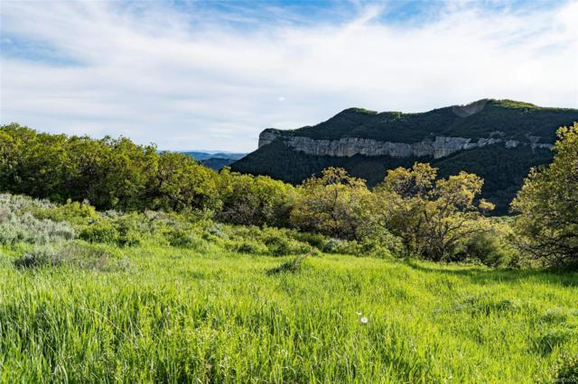 Grouse Ridge Lane, Steamboat Springs, CO 80487 (#5230779) :: The City and Mountains Group