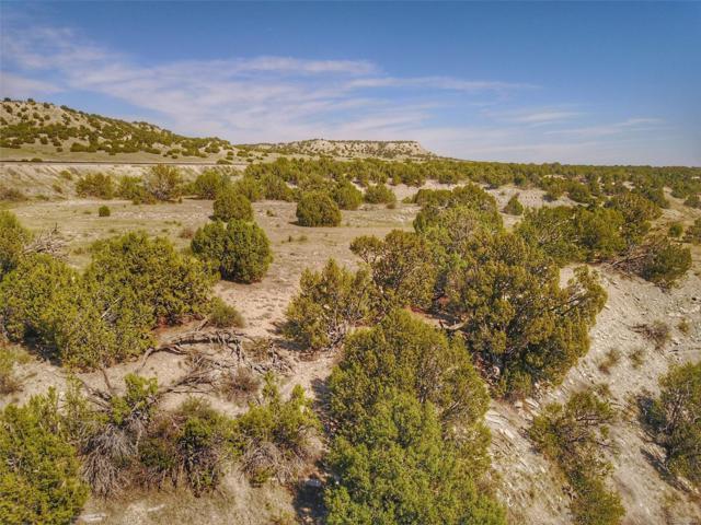 Cedarwood Road, Pueblo, CO 81019 (#5232029) :: Compass Colorado Realty
