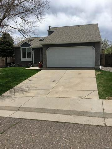 11348 W Maplewood Drive, Littleton, CO 80127 (MLS #5233142) :: Bliss Realty Group