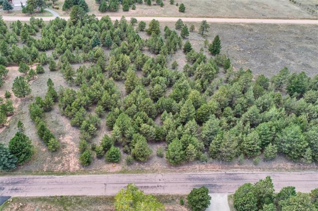 Lot 5 Stone View Road, Monument, CO 80132 (#5233474) :: The HomeSmiths Team - Keller Williams