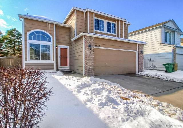 4547 N Foxtail Drive, Castle Rock, CO 80109 (#5234594) :: The Gilbert Group