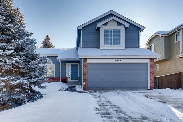 9984 Deer Creek Court, Highlands Ranch, CO 80129 (#5239664) :: The Griffith Home Team