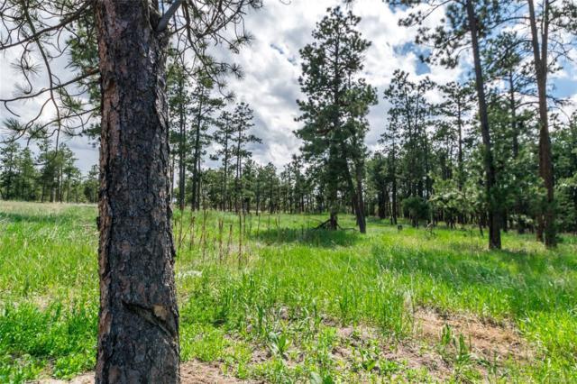 19405 Hilltop Pines Path, Monument, CO 80132 (#5244078) :: James Crocker Team
