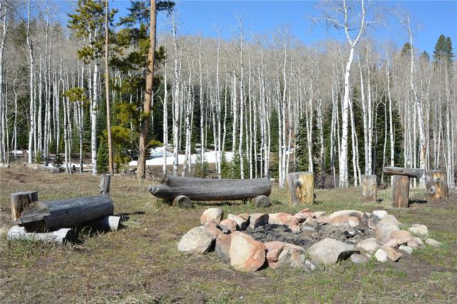21525 Green Ridge Court, Oak Creek, CO 80467 (#5246353) :: The Healey Group