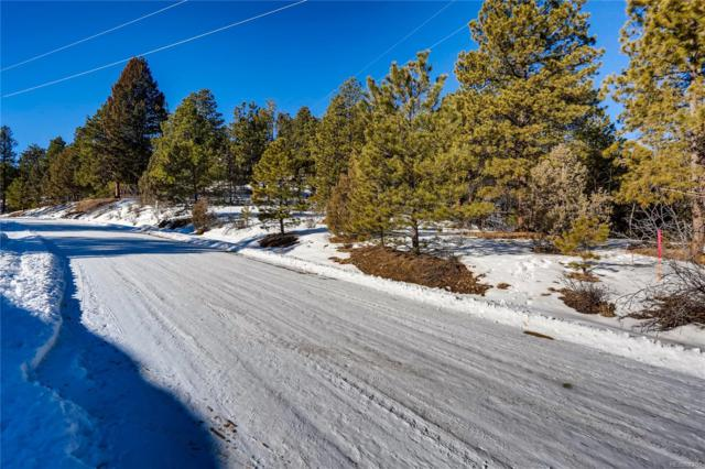 205 Blueberry Trail, Bailey, CO 80421 (MLS #5248565) :: 8z Real Estate
