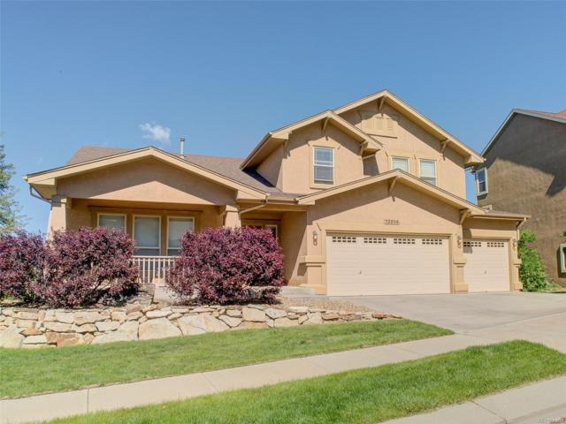 12614 Woodmont Drive, Colorado Springs, CO 80921 (#5248723) :: Wisdom Real Estate