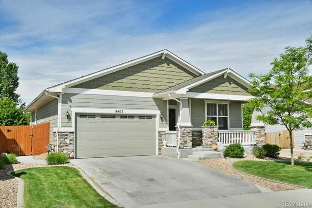 16603 Downing Street, Thornton, CO 80602 (MLS #5252140) :: Bliss Realty Group