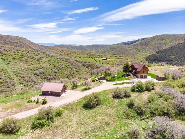 39800 Westridge Road, Steamboat Springs, CO 80487 (#5252855) :: Bring Home Denver with Keller Williams Downtown Realty LLC