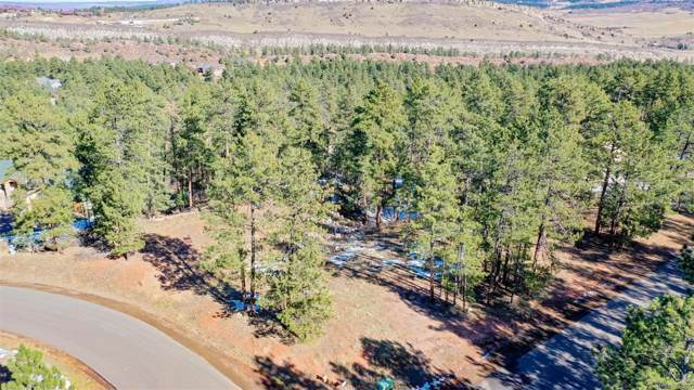 4459 Shoshone Drive, Larkspur, CO 80118 (#5254130) :: True Performance Real Estate