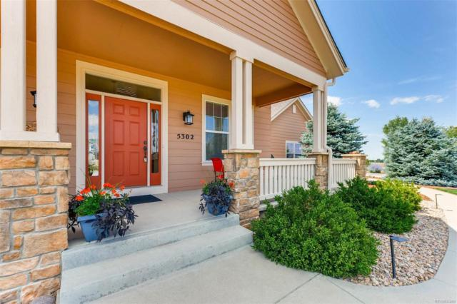 5302 Danvers Court, Castle Rock, CO 80104 (#5254595) :: Bicker Realty