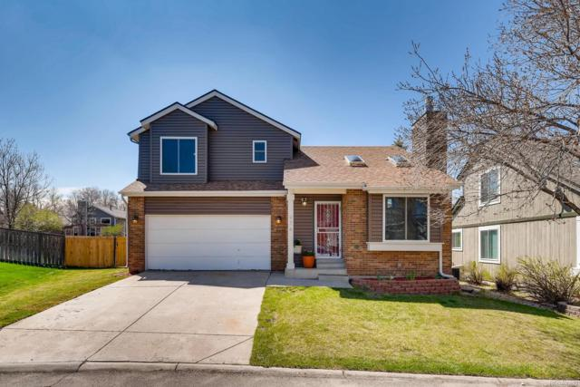 974 Lily Court, Highlands Ranch, CO 80126 (#5256151) :: Colorado Team Real Estate