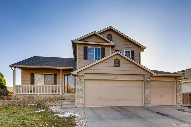 11631 Moline Court, Commerce City, CO 80640 (#5259701) :: Realty ONE Group Five Star