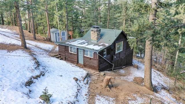 5005 White House Trail, Evergreen, CO 80439 (#5260170) :: Arnie Stein Team | RE/MAX Masters Millennium