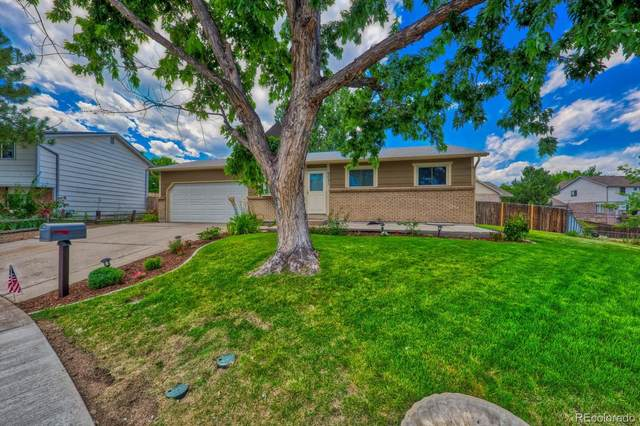 6051 S Estes Street, Littleton, CO 80123 (#5261838) :: Colorado Home Finder Realty