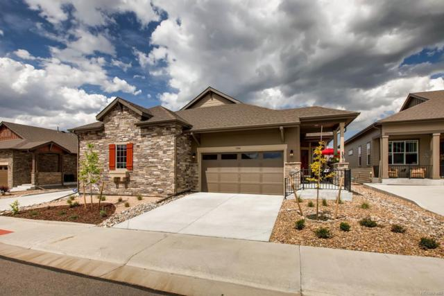 3584 New Haven Circle, Castle Rock, CO 80109 (#5262234) :: Sellstate Realty Pros