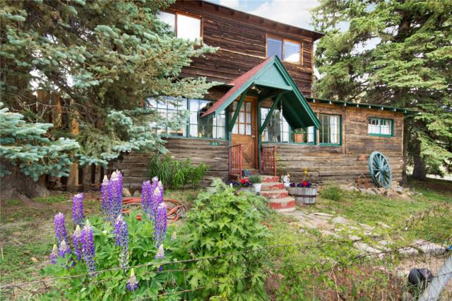 85 E Mountain Avenue, Empire, CO 80438 (#5264307) :: The DeGrood Team