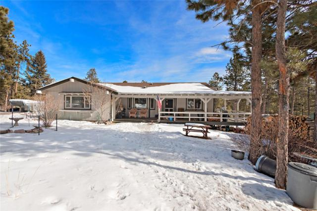 540 Dawson Road, Pine, CO 80470 (MLS #5264916) :: Bliss Realty Group