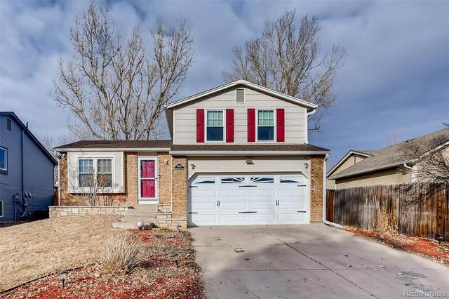 8443 Wheatgrass Circle, Parker, CO 80134 (#5268846) :: The Harling Team @ Homesmart