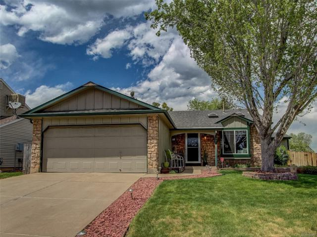 10901 W Brittany Drive, Littleton, CO 80127 (#5269150) :: Sellstate Realty Pros