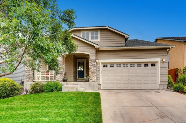 6587 Cool Mountain Drive, Colorado Springs, CO 80923 (MLS #5271483) :: 8z Real Estate