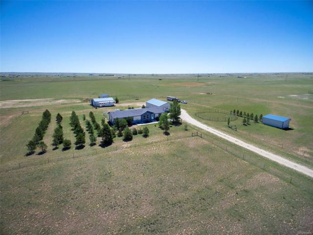 875 High Prairie Point, Calhan, CO 80808 (#5271657) :: The Heyl Group at Keller Williams