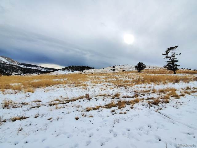 W Womack Avenue, Cripple Creek, CO 80813 (#5276783) :: Wisdom Real Estate