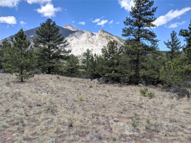 16088 Oppliger Drive, Nathrop, CO 81236 (#5277594) :: The Galo Garrido Group