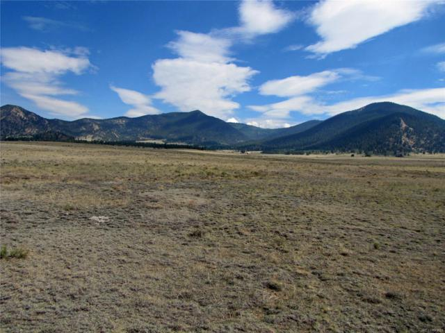 7251 Summit Road, Hartsel, CO 80449 (#5281123) :: Structure CO Group