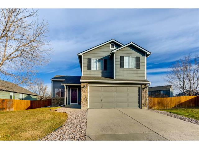 3747 Black Feather Trail, Castle Rock, CO 80104 (MLS #5283226) :: 8z Real Estate