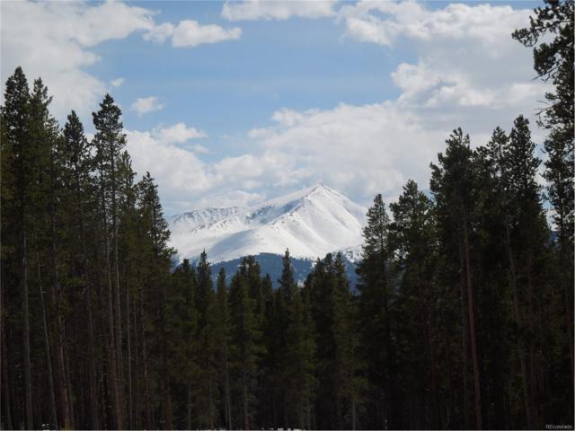 14 Elk Trail, Leadville, CO 80461 (MLS #5285814) :: 8z Real Estate