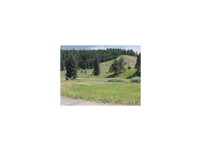 21294 Colonist Way, Morrison, CO 80465 (#5289914) :: The Umphress Group