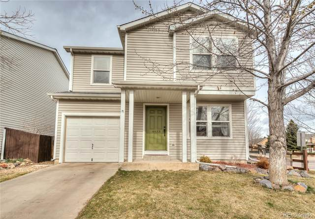 4633 S Tabor Way, Morrison, CO 80465 (#5290123) :: Bring Home Denver with Keller Williams Downtown Realty LLC