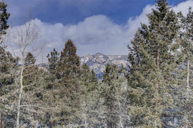 34 Nova Circle, Pine, CO 80470 (MLS #5290879) :: Bliss Realty Group