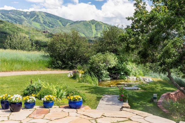 39100 County Road 34, Steamboat Springs, CO 80487 (#5297315) :: The Healey Group