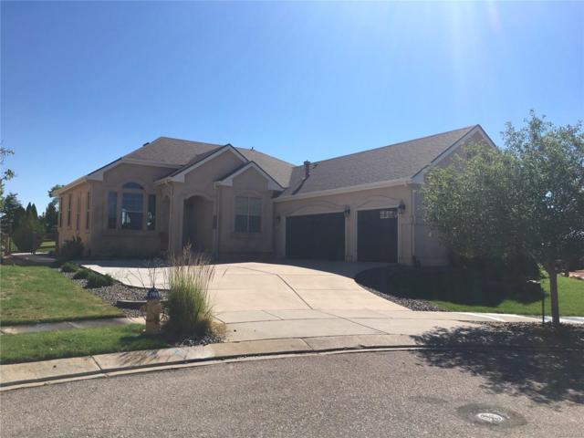 8585 Jacks Fork Drive, Colorado Springs, CO 80924 (MLS #5298266) :: 8z Real Estate