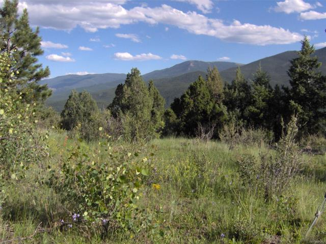 572 Pine Hollow Road, Bailey, CO 80421 (MLS #5298942) :: 8z Real Estate