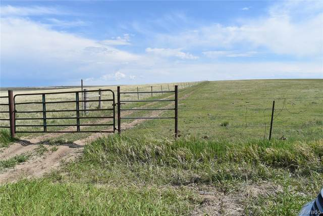Cr 194, Elizabeth, CO 80107 (MLS #5299361) :: Neuhaus Real Estate, Inc.