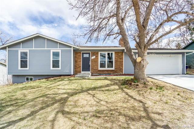 4462 S Alkire Street, Morrison, CO 80465 (#5301520) :: The Griffith Home Team