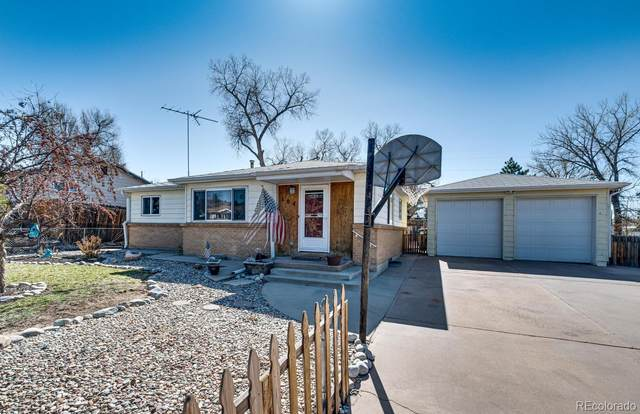 104 Ash Avenue, Castle Rock, CO 80104 (#5301578) :: The Dixon Group