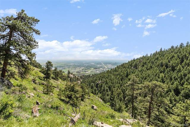 00 Sky Meadow Lane, Golden, CO 80401 (#5302212) :: Re/Max Structure
