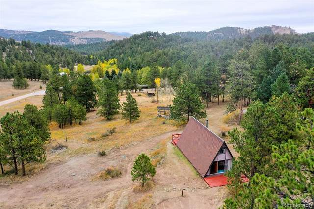 274 Chickadee Lane, Bailey, CO 80421 (#5303997) :: Mile High Luxury Real Estate